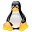 Driver Scheda Video SIS - Linux